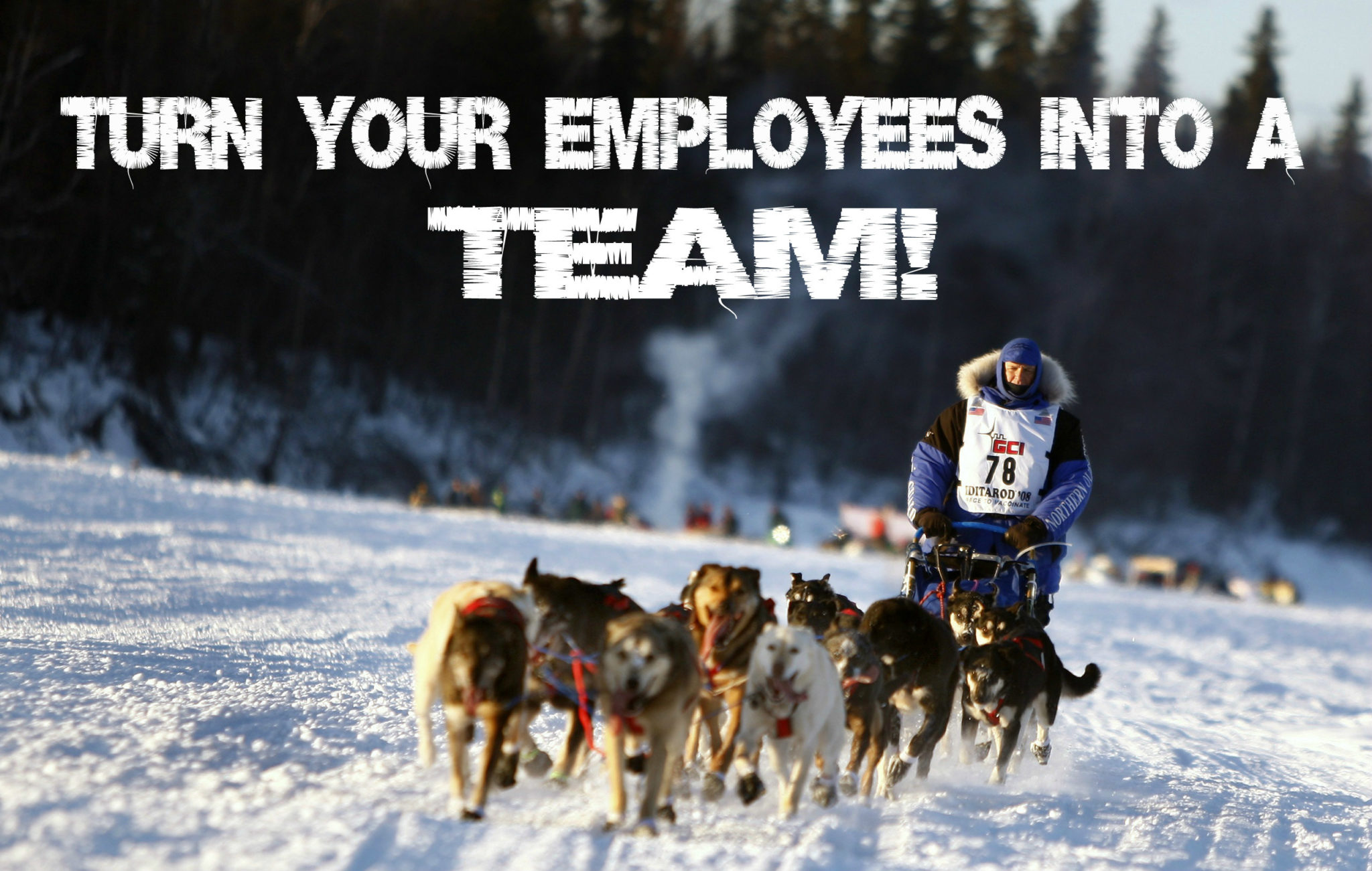 Employees into team